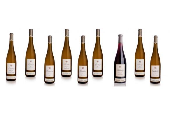 Colis de 12 bouteilles panachées